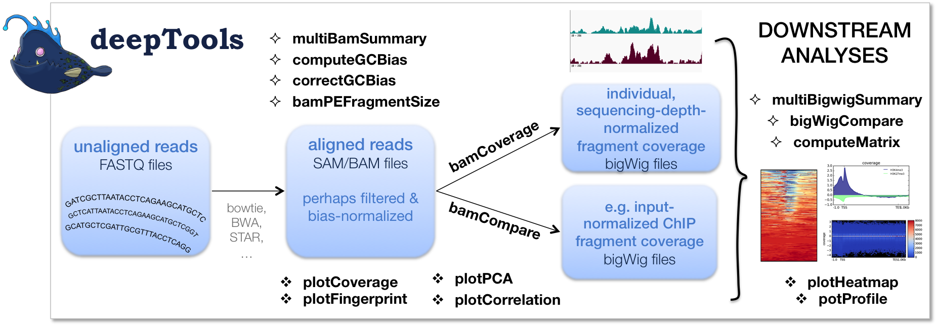 How to analyze chip-seq data to determine whether peaks are found.
